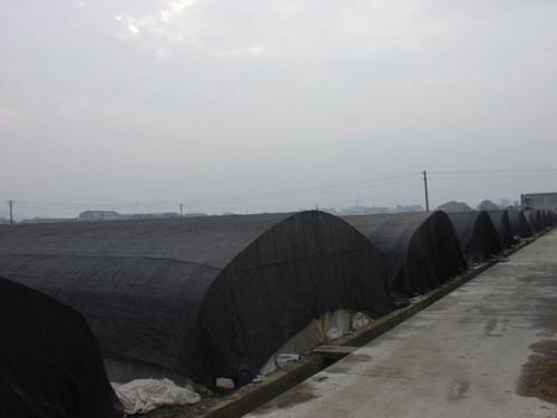 河南大棚遮阳网